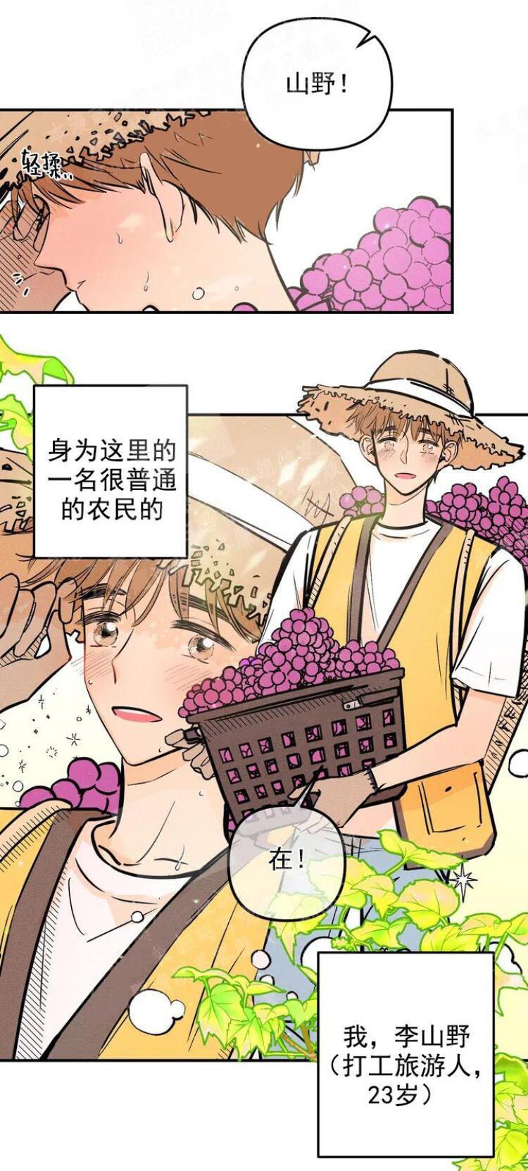 韩国漫画奏爱在线全集